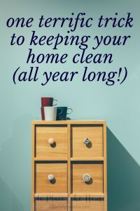Wanting a neater living space but are you always feeling like things will never be clean? Try this one trick to keeping your home clean all year long!