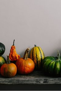 Row of pumpkin and gourds